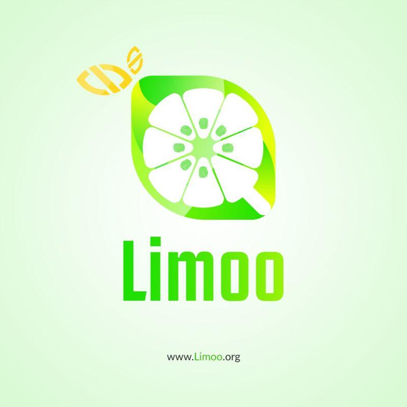 برنامه نویسی از زبان سایت لیمو